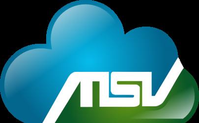 MSV GmbH